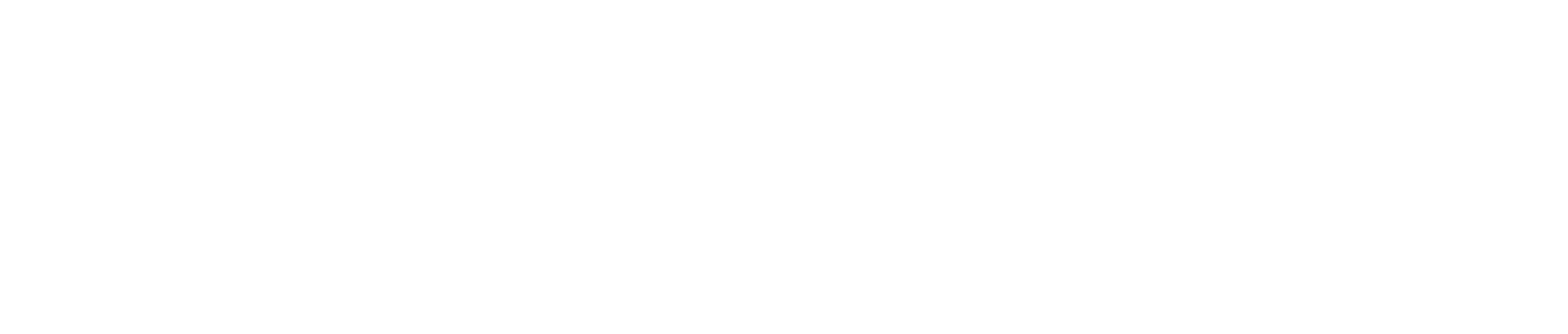 CapitalEngine_footer_logo